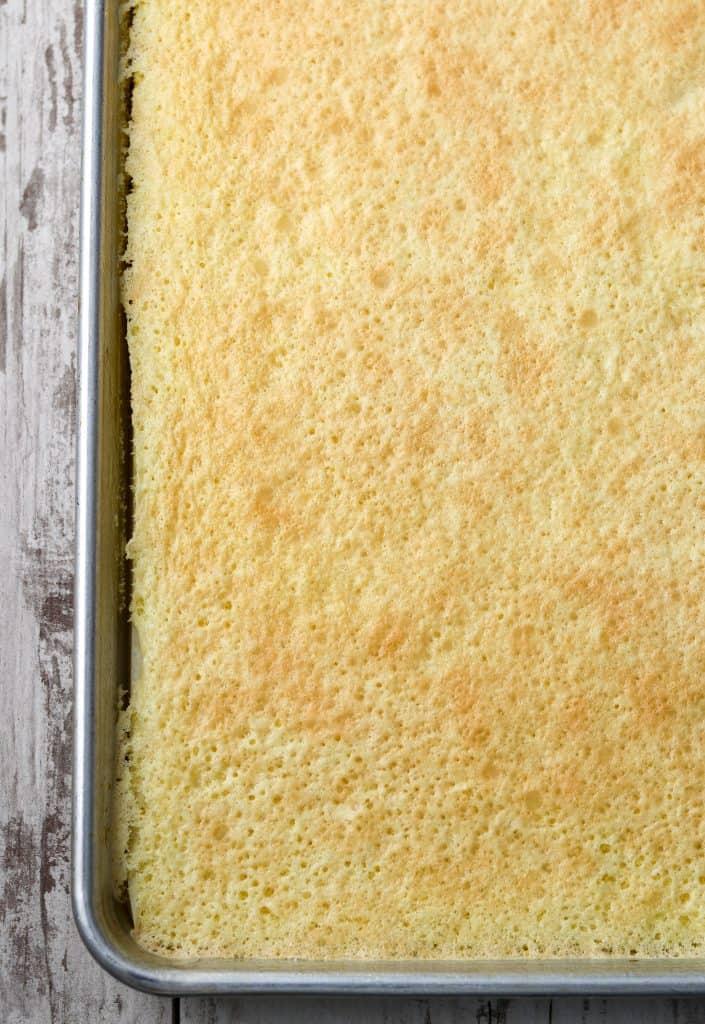 Sponge cake in pan