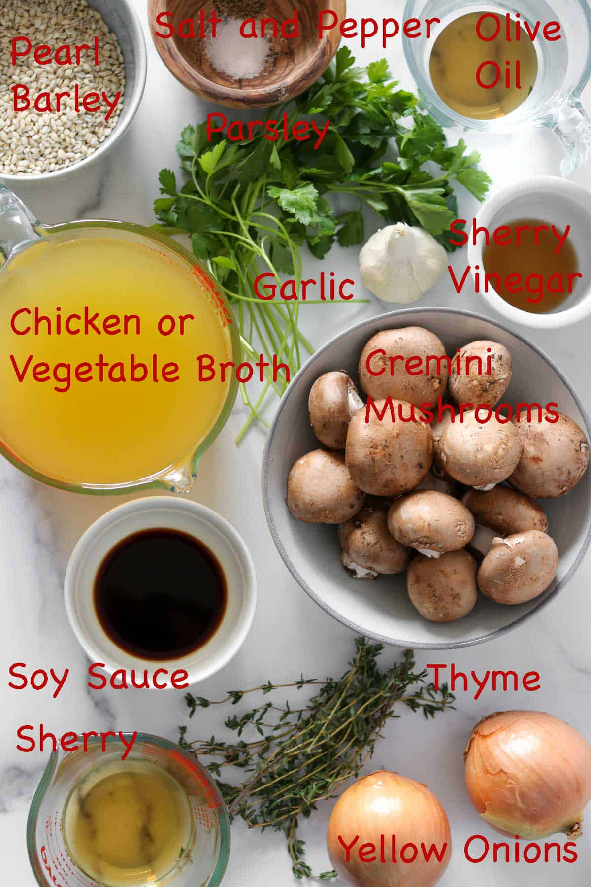 Labeled ingredients for Caramelized Onion, Mushroom and Barley Soup