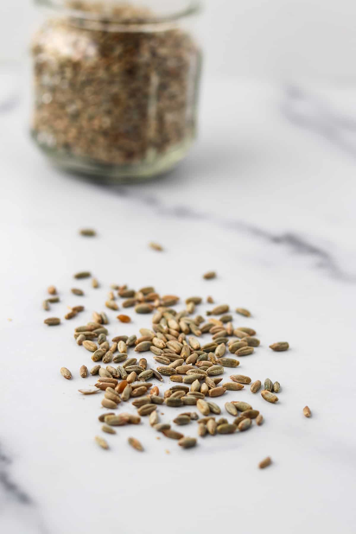 Rye Berries on a marble surface.