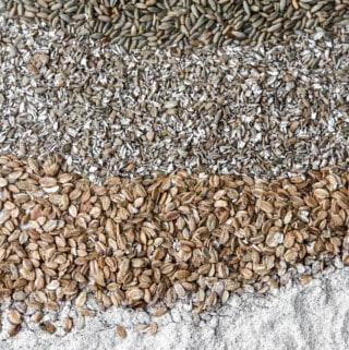 Rye berries, rye chops, rye flakes and rye flour.