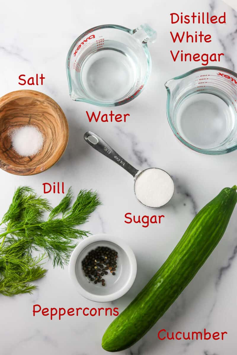Labeled ingredients for Quick Swedish Pickled Cucumbers