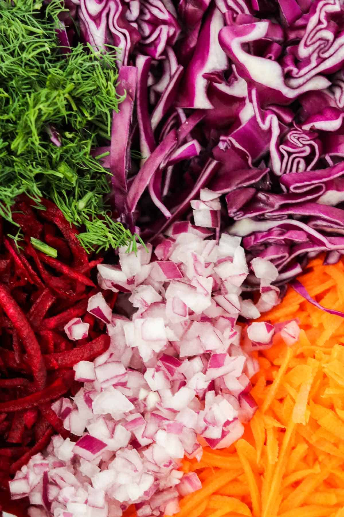 Close up of chopped up red cabbage, red onion, carrots, beets and dill.