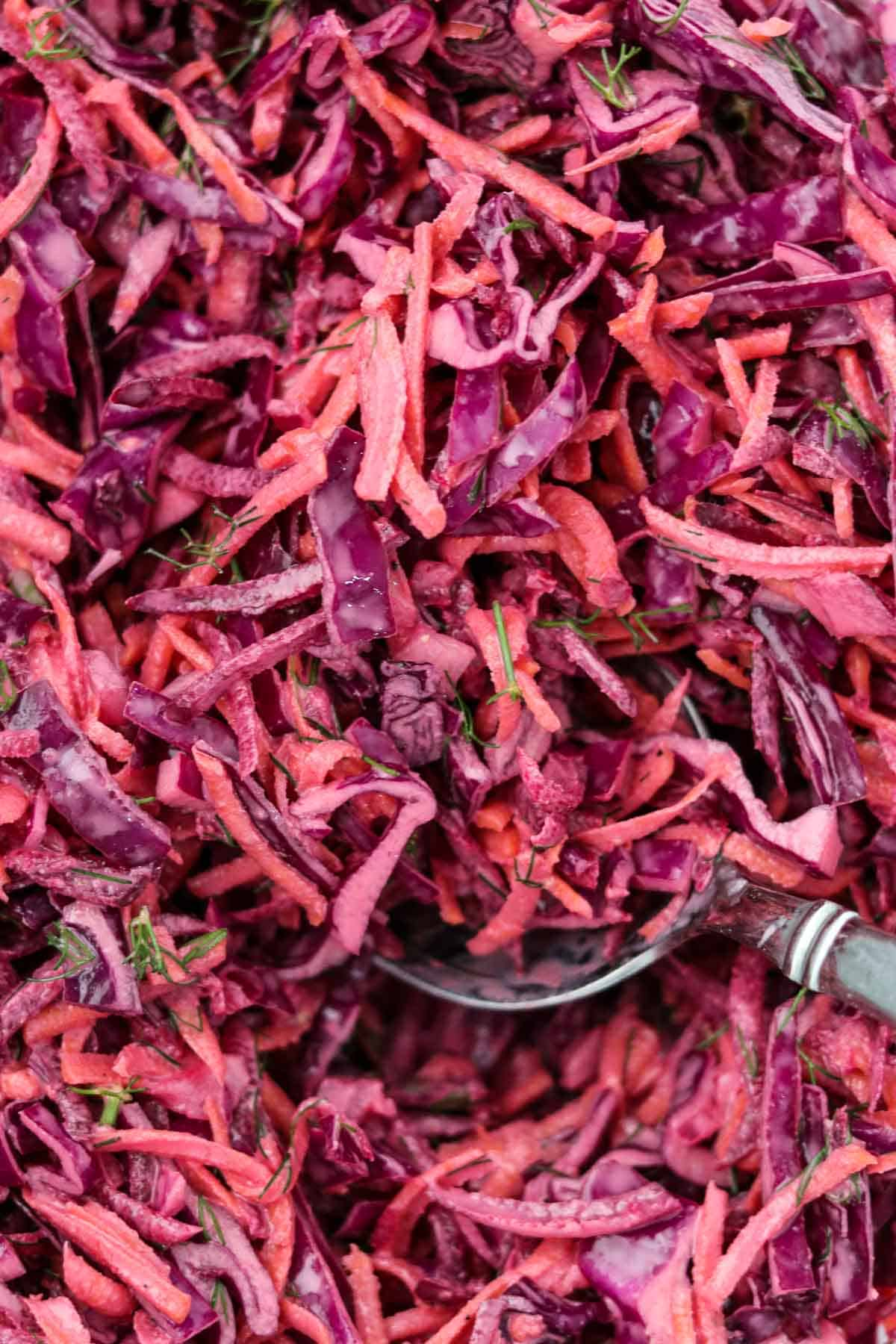 Close up of Red Cabbage Slaw and and a spoon.
